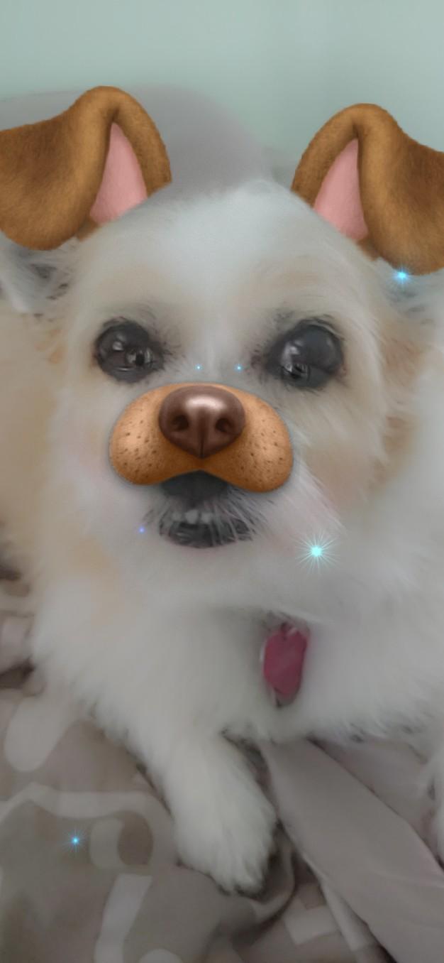 Snapchat-Georgie